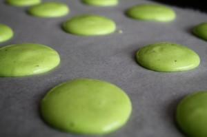 Macarons fromage frais/ciboulette, la recette dans les macarons img_4290-300x199